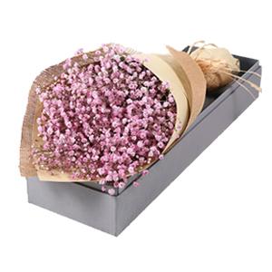 鲜花/爱如繁星:粉色满天星礼盒 花 语:爱如繁星