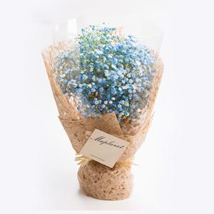 鲜花/星空之恋:蓝色满天星 花 语:和你一起追逐幸福