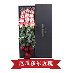鲜花/太阳恋人:12枝厄瓜多尔玫瑰 花 语:有你的日子,别样的多彩