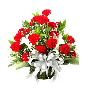 鲜花/美丽季节:红色康乃馨36朵 白色百合2朵 配材: 满天星 绿叶