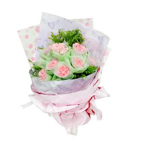 鲜花/祝愿相伴:9支粉色康乃馨 包 装:康乃馨内用网纱外用淡绿色棉