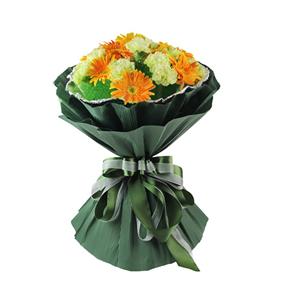 鲜花/唯有父爱:16只绿色康乃馨,5枝橘色扶朗间插 花 语:父爱无