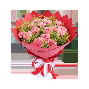 鲜花/粉色康乃馨:16支粉色康乃馨,黄莺满、天星辅材 花 语:献上我