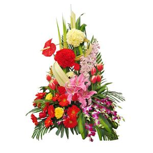 鲜花/祝福永相伴:粉色百合、红色太阳花、红色郁金香、红色和黄色康乃馨,