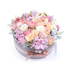 鲜花/简爱:桔梗(白色、粉色、香槟色桔梗各7枝) 花 语:转身