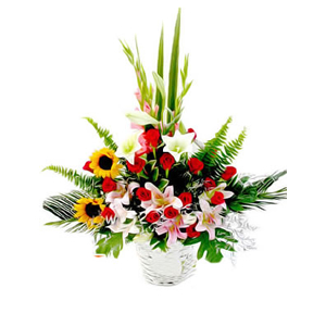 鲜花/阳光总在风雨后:2枝向日葵(向日葵会季节性花材没有会用太阳花代替 )