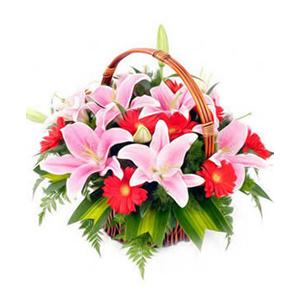 鲜花/因为有你:6枝粉色多头香水百合,12枝红色扶郎 包 装:有柄