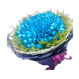 鲜花/蓝色海洋:99只蓝色妖姬 包 装:白色和深紫色皱纹纸圆形包装