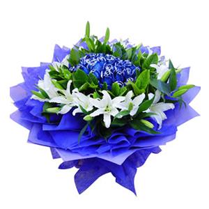 鲜花/蓝色多瑙河:21支蓝色妖姬,8支白色多头香水百合 包 装:蓝色