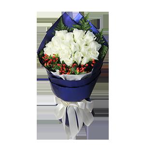 鲜花/最好的时光:19枝白玫瑰。 配材:高山羊齿围边,火龙珠相衬 花