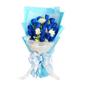 鲜花/海誓山盟:19枝蓝色妖姬 包 装:白色纱网及蓝色皱纹纸扇面包