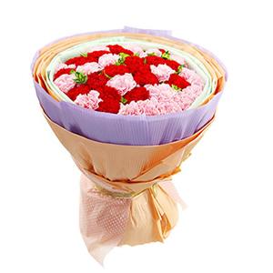 鲜花/温馨的祝福:20枝粉色康乃馨,20枝红色康乃馨 包 装:绿色学