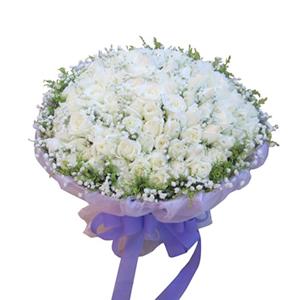 鲜花/一生幸福:101枝白玫瑰 包 装:紫色皱纹纸外围一层紫色羽纱