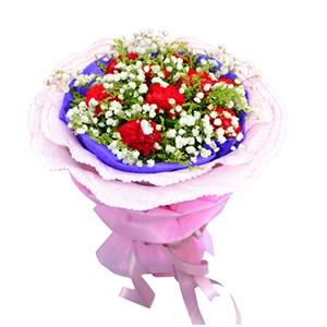 鲜花/我的祝福:9枝红色康乃馨 包 装:紫色棉纸内衬,粉色卷边纸多