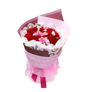 鲜花/妈妈的吻:21枝红色康乃馨 包 装:白色棉纱围边,粉色、暗红
