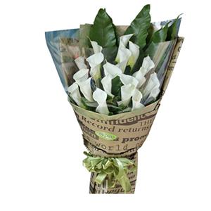 鲜花/让爱地老天荒:20枝白色马蹄莲(12月到次年5月花期) 包 装: