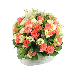 鲜花/甜蜜祝愿:40枝粉玫瑰 包 装:圆形提篮插花