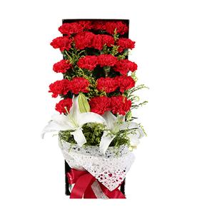 鲜花/妈妈辛苦了: 19支红色康乃馨、1支多头百合  [包 装]