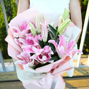 鲜花/倾心:9枝多头粉色百合 花 语:愿你是随即破土的种子,在