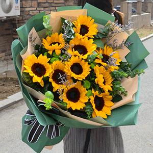鲜花/春日里的暖阳:11枝精品太阳花+高级配草 花 语:春日暖阳