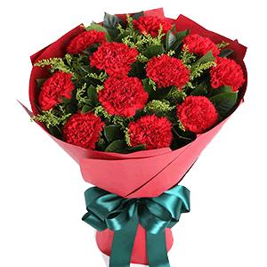 鲜花/花开时节:11枝红色康乃馨 花 语:花开时节,感恩季