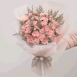 鲜花/粉色母爱:33枝粉色康乃馨+高级配草 花 语:写一首温暖的诗