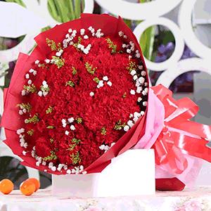 鲜花/谆谆教诲:33枝红色康乃馨+高级配草 花 语:师恩如母爱,感
