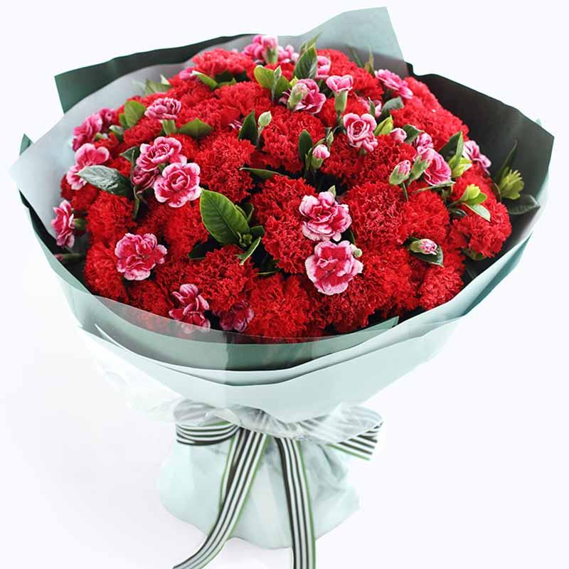鲜花/安康顺利:66支红色康乃馨 高级配花 花 语:66枝花朵寄托
