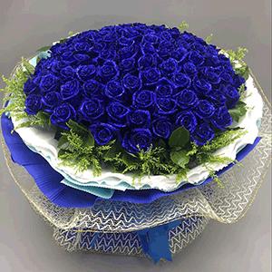 鲜花/香榭丽舍:99枝蓝色妖姬 高级配草 花 语:别人再好,与我无