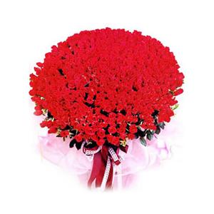 鲜花/花儿为谁红:红玫瑰999枝 包 装:粉红色皱纸,丝棉纸呈精致的