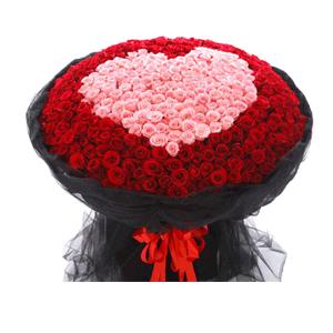 鲜花/心甘情愿:999枝红玫瑰+粉玫瑰 花 语:众生皆苦,只有你甜